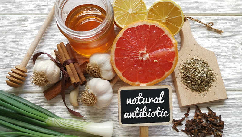 Image of 11 natural antibiotic foods like honey, garlic, and oregano